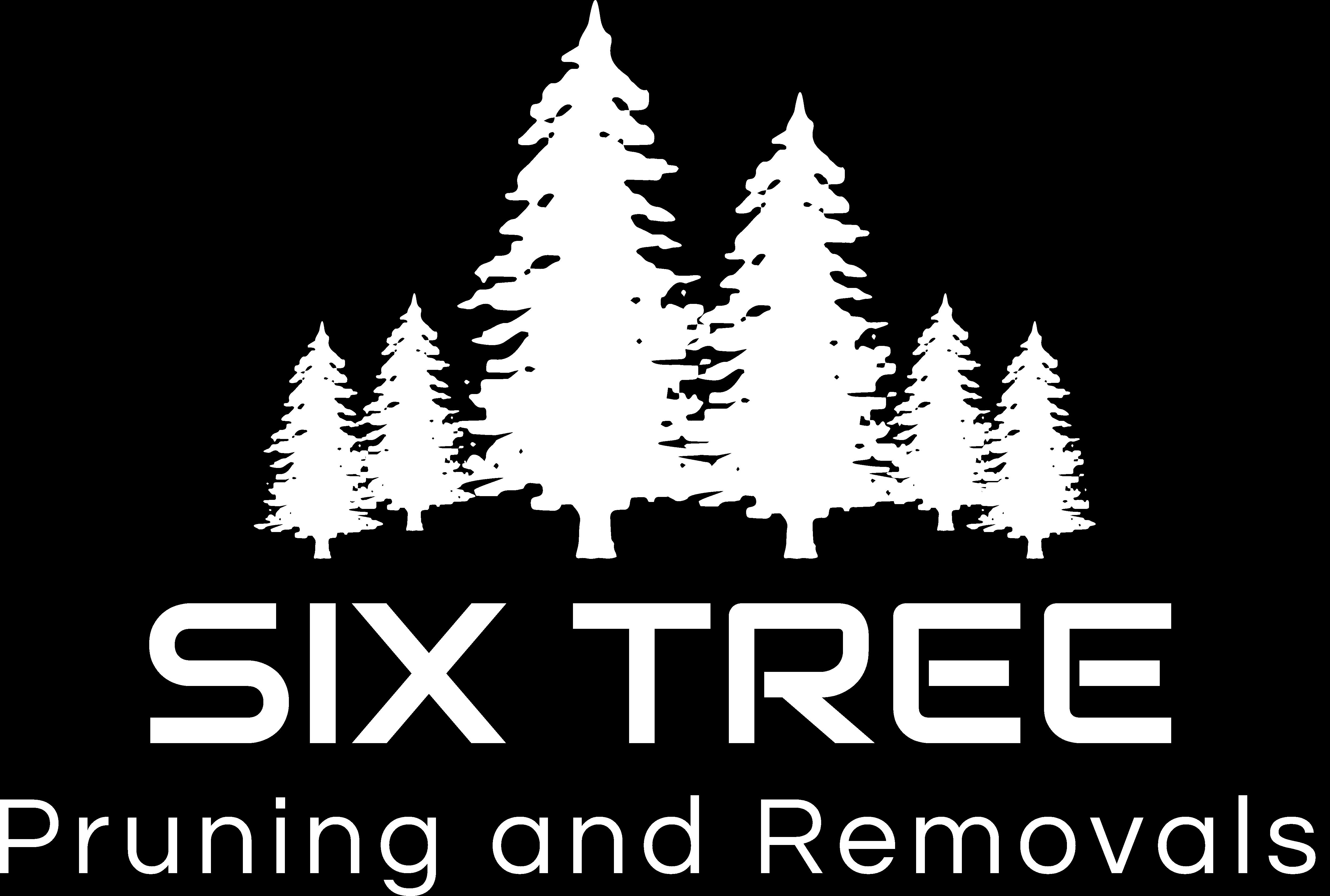 Sixtree